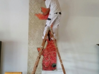 Malerarbeiten 21016 Bildtapete