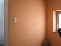 malerarbeiten-21004-glasvliestapeten